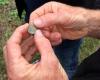 benny's-coin